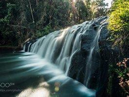 Malanda Falls Conservation Park
