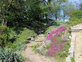 Национальный ботанический сад им. Н. Н. Гришко НАН Украины