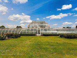 Kráľovské botanické záhrady (Kew)