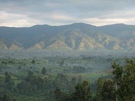 Горы Рувензори (национальный парк)