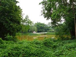 Sakunothayan Arboretum