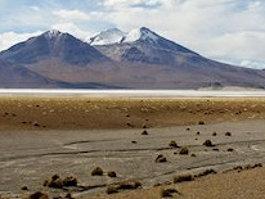 Salar de Surire Natural Monument