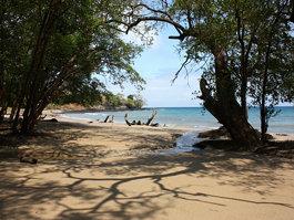 Сан-Томе (остров)