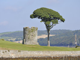 Strangford Castle