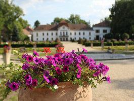 Széchenyi Mansion