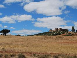 Замок Терена