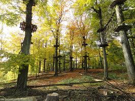 Teutoburgi erdő