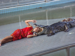 The Million Years Stone Park and Pattaya Crocodile Farm