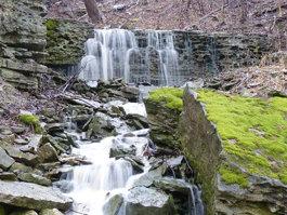 Vinemount East Falls