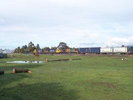 Westbury Maze