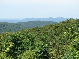 Wilhelmina Mountains