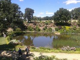 Wojsławice Arboretum