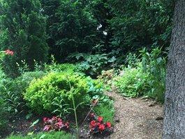 Запорізький міський дитячий ботанічний сад