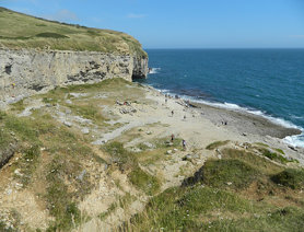 Near Dancing Ledge (Dorset)