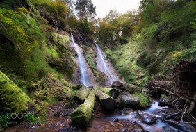 """Where fairies roam"" - Llanrwst, Conwy, Wales."