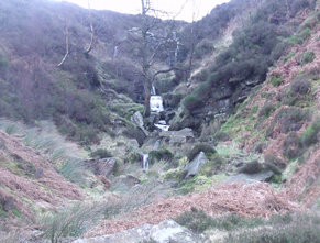 Bronte Falls, 22nd January, 2012