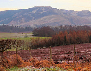 Perthshire Scenery