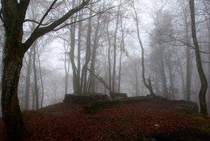 Remains of Schnabelburg