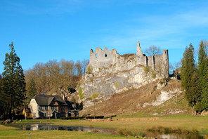 Castle of Montaigle