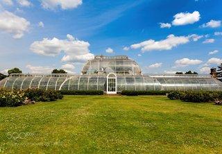Palm House Kew ll