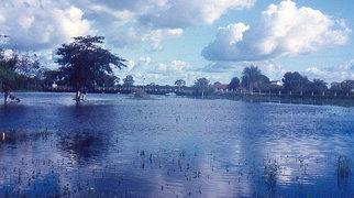 Pantanal>