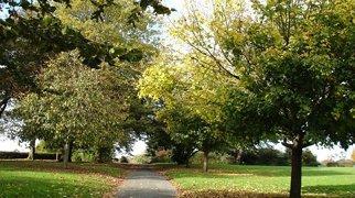 Devonport Park>