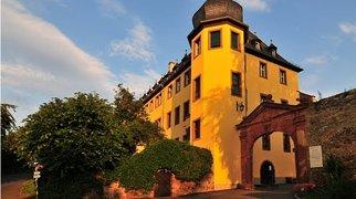 Schloss Vollrads>