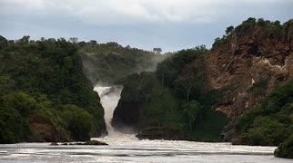 Murchison Falls>