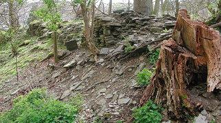 Aberedw Castle>
