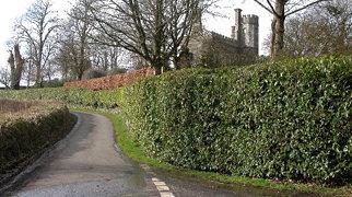 Affeton Castle>
