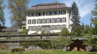 Reichenbach Castle>
