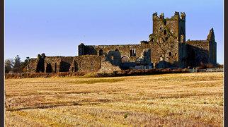 Dunbrody Abbey>