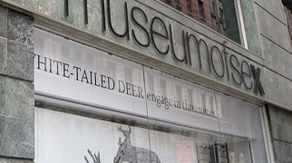 Museum of Sex>