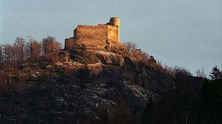 Хойник (замок)>