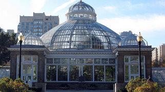 Allan Gardens>