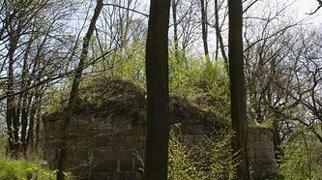 Anhalt Castle>