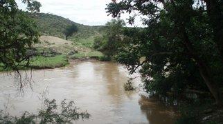 Awash River>
