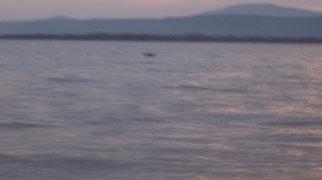 Aydar Lake>