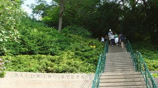 Baldwin Steps>