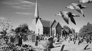 Bangor Abbey>
