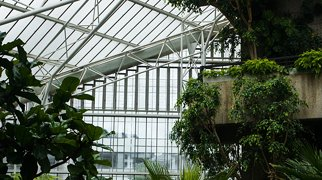 Barbican Conservatory>