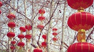 Beihai Park>