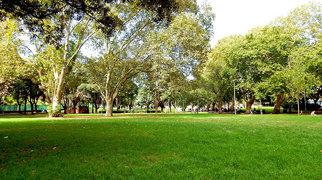 Belmore Park>