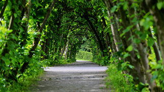 Bergpark Wilhelmshöhe>