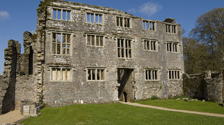 Berry Pomeroy Castle>