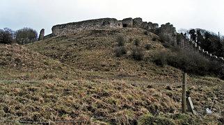 Berwick Castle>