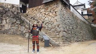 Castillo Bitchū Matsuyama>