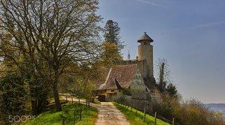 Burg Birseck>