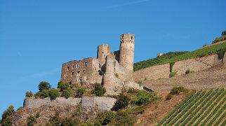 Burg Ehrenfels (Hessen)>