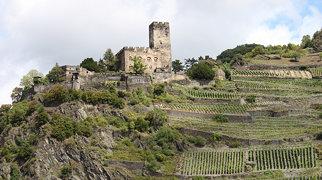 Burg Gutenfels>